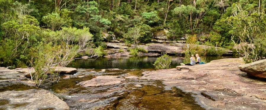 Het Sydney Royal National Park ligt vlakbij de stad en is perfect om even te wandelen en tot rust te komen in de prachtige natuur.