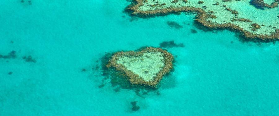 Met een helikoptervlucht boven de whitsundays zie je soms erg hartelijke koraalriffen!