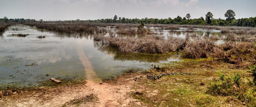 Het prachtige landschap rond Siem Reap.