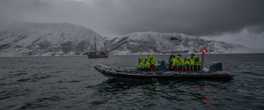 Tromsø walvis safari.