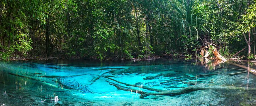 De Emerald pool ligt een beetje verscholen, maar eens je de turquoise poel bereikt zal je versteld staan!