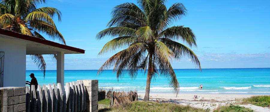 Strand, turquoise zee en palmbomen. Wat hoeft een mens nog meer?