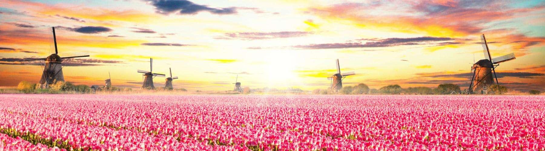 nederlandse reismaatschappijen