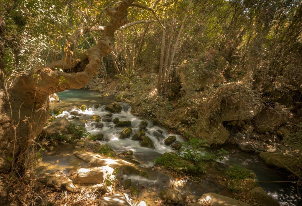 Het banias natuurdomein in Israel, met zijn vele watervallen.
