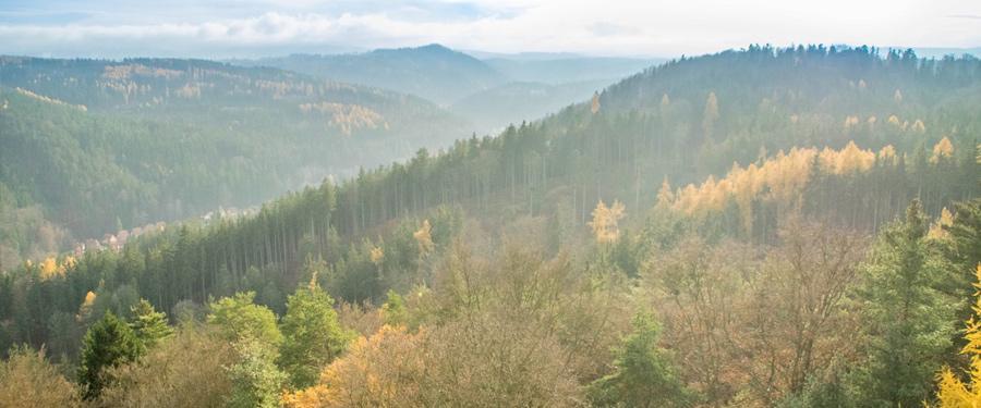 Vanuit het Diana uitkijkplatform krijg je een spectaculair uitzicht over Karlovy Vary!