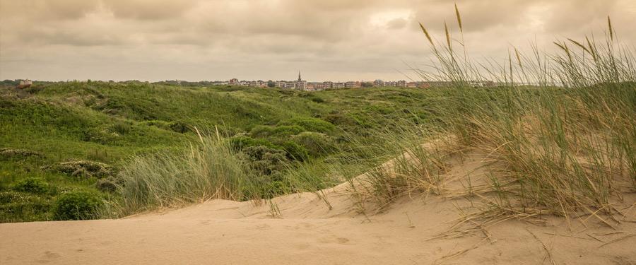 De prachtige duinen van het kleine Katwijk-Aan-Zee. Een gezellige badplaats aan de Nederlandse kust.