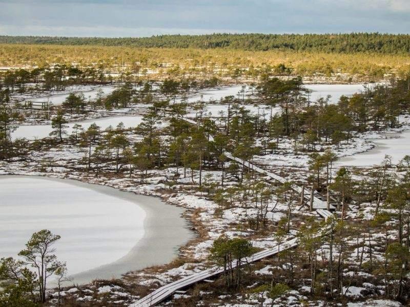 kemeri national park letland