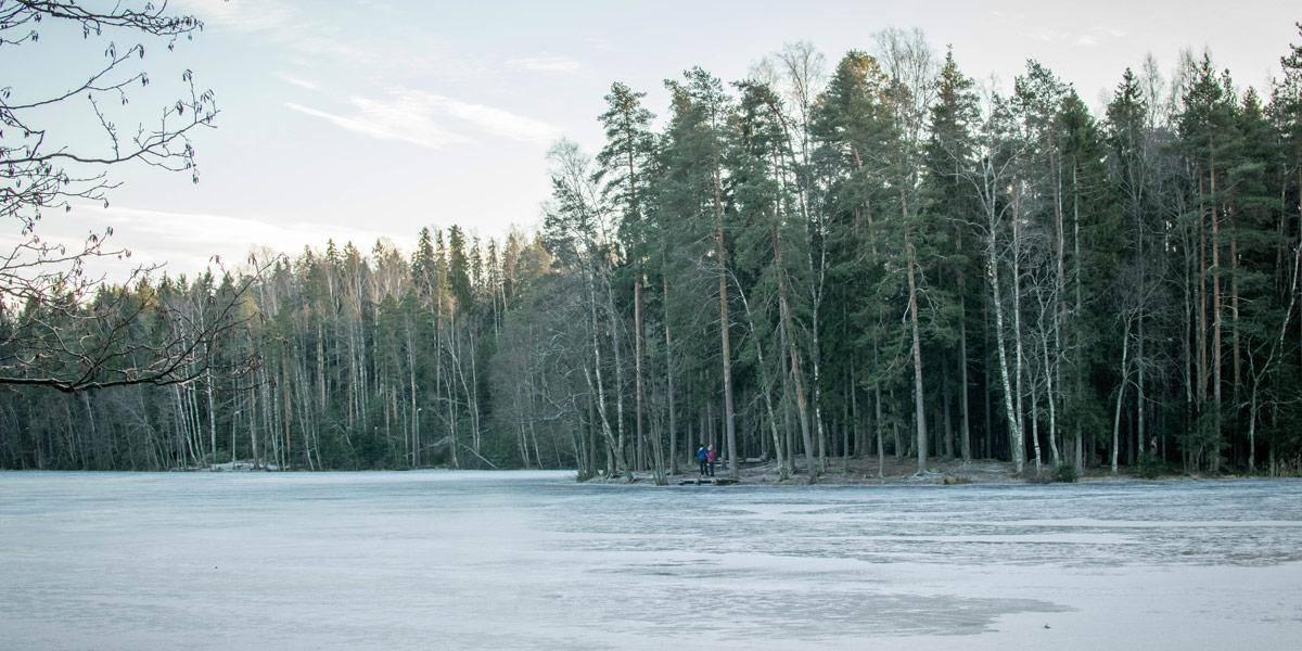 Het Kuusijärvi domein is verrassend mooi. Naast de sauna kan je dus ook even van de natuur genieten!