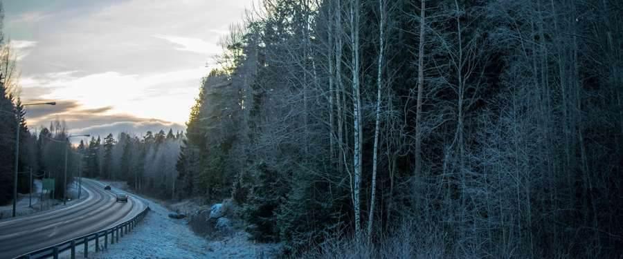 In Helsinki zelf is er niet zo veel natuur, maar vlakbij is meer dan voldoende natuur om te ontdekken.