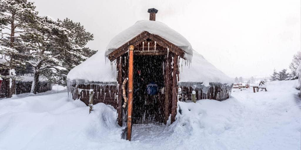 tromso husky safari noorwegen lapland