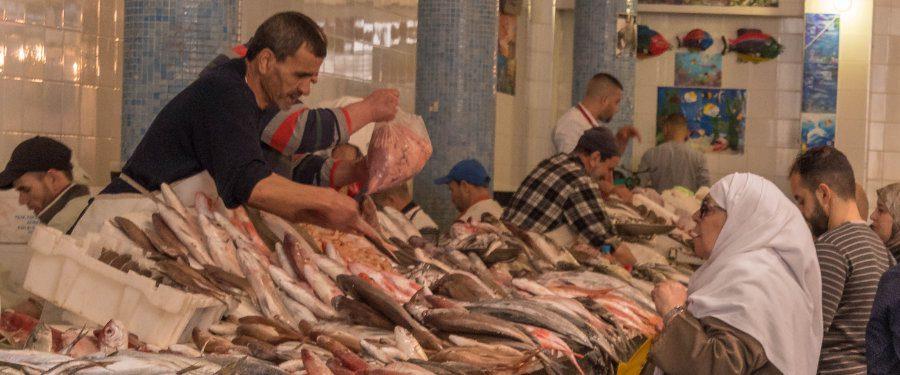 vismarkt tanger souk