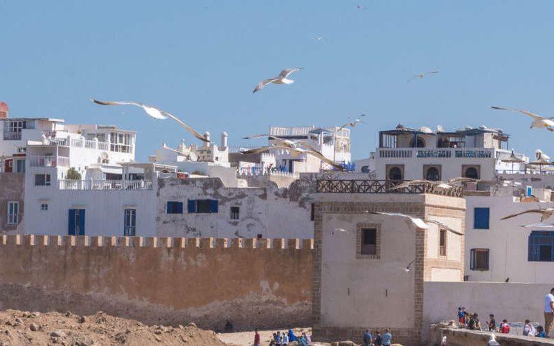 Van Marrakech naar Essaouira