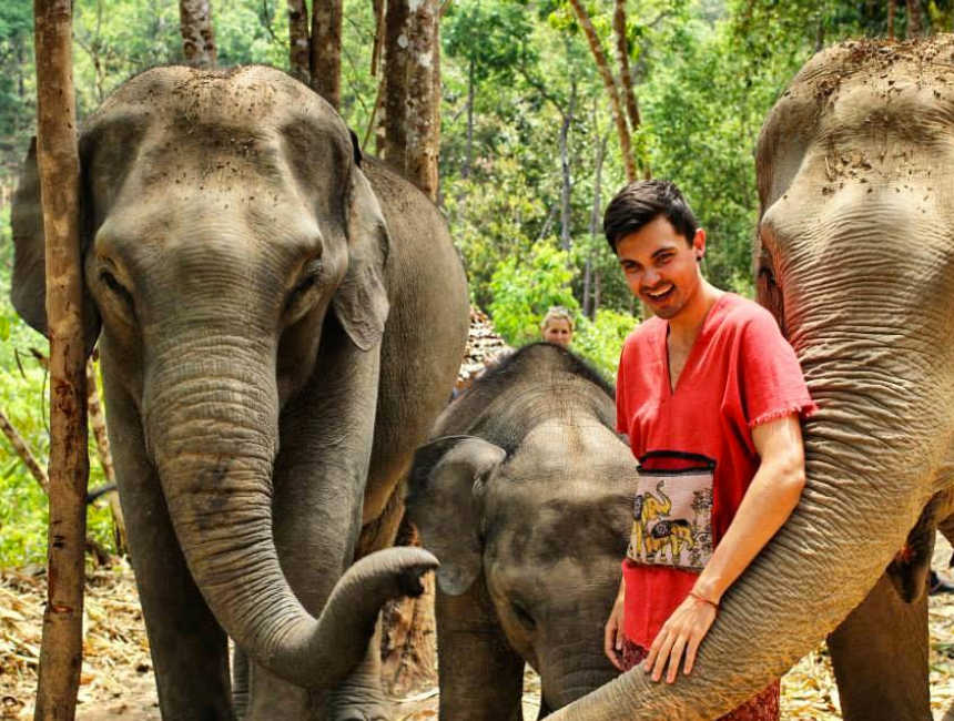 chiang mai thailand olifanten