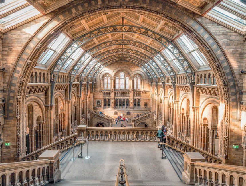 National History Museum Londen hoogtepunten