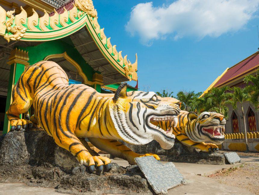 Tiger Temple Krabi