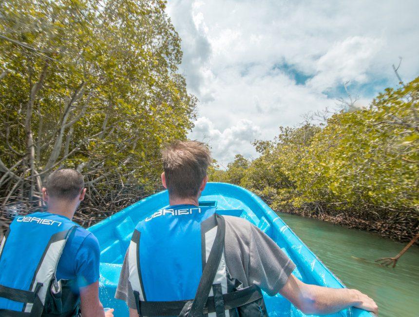 mangrove cajo Paraiso