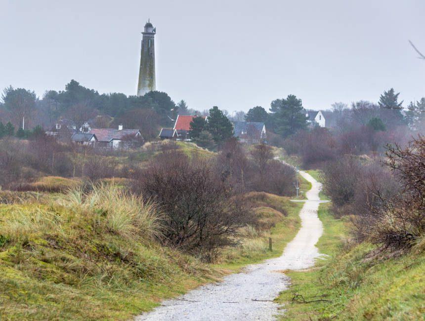 fietsen in Schiermonnikoog