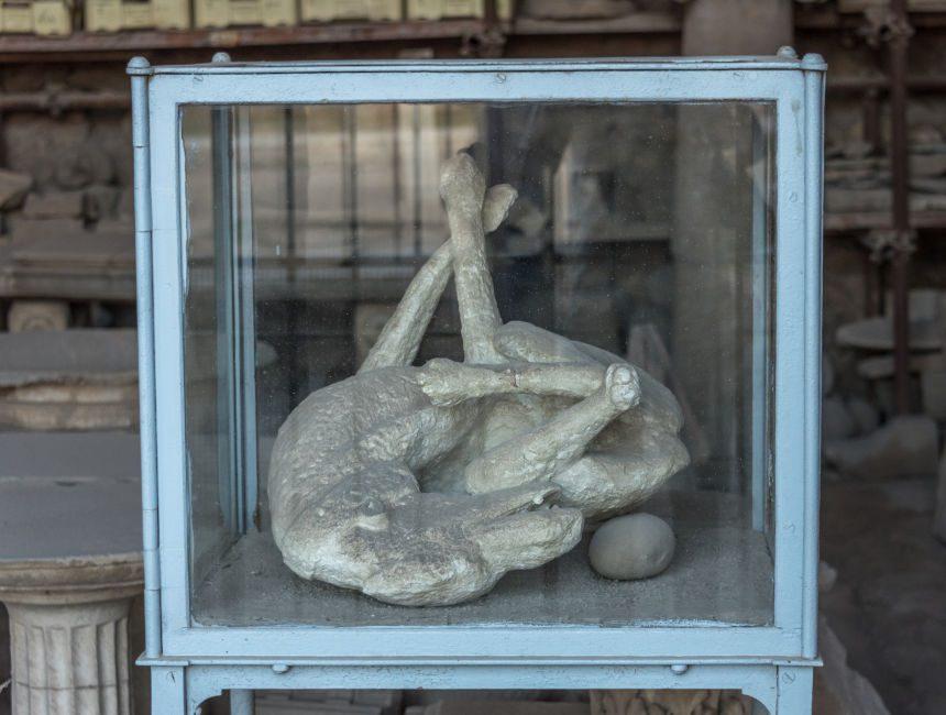 pompeii hond afgietsel