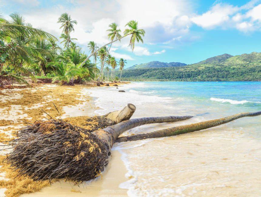 Samana eiland dingen om te doen punta cana