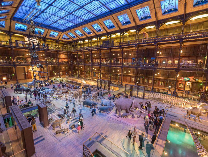 muséum national d'histoire naturelle parijs dingen om te doen