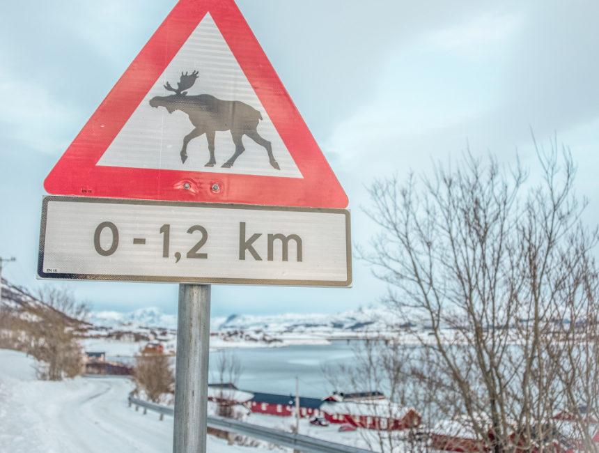 parkeerregels noorwegen