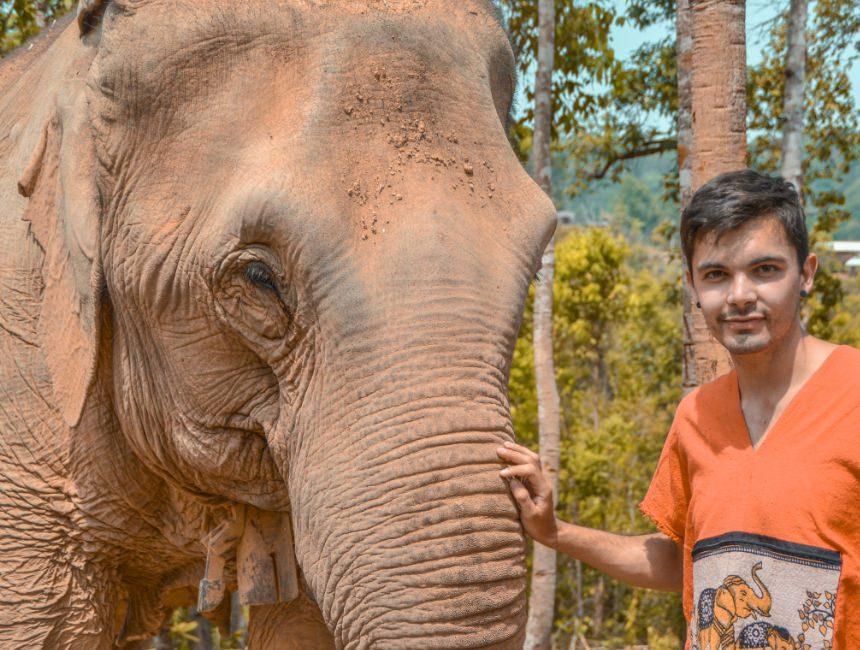 Olifanten thailand Checkoutsam