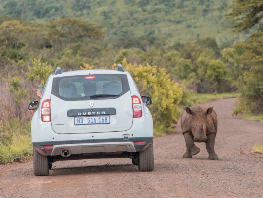 autoverhuur Zuid-Afrika