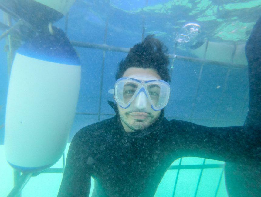 zwemmen met haaien gevaarlijk