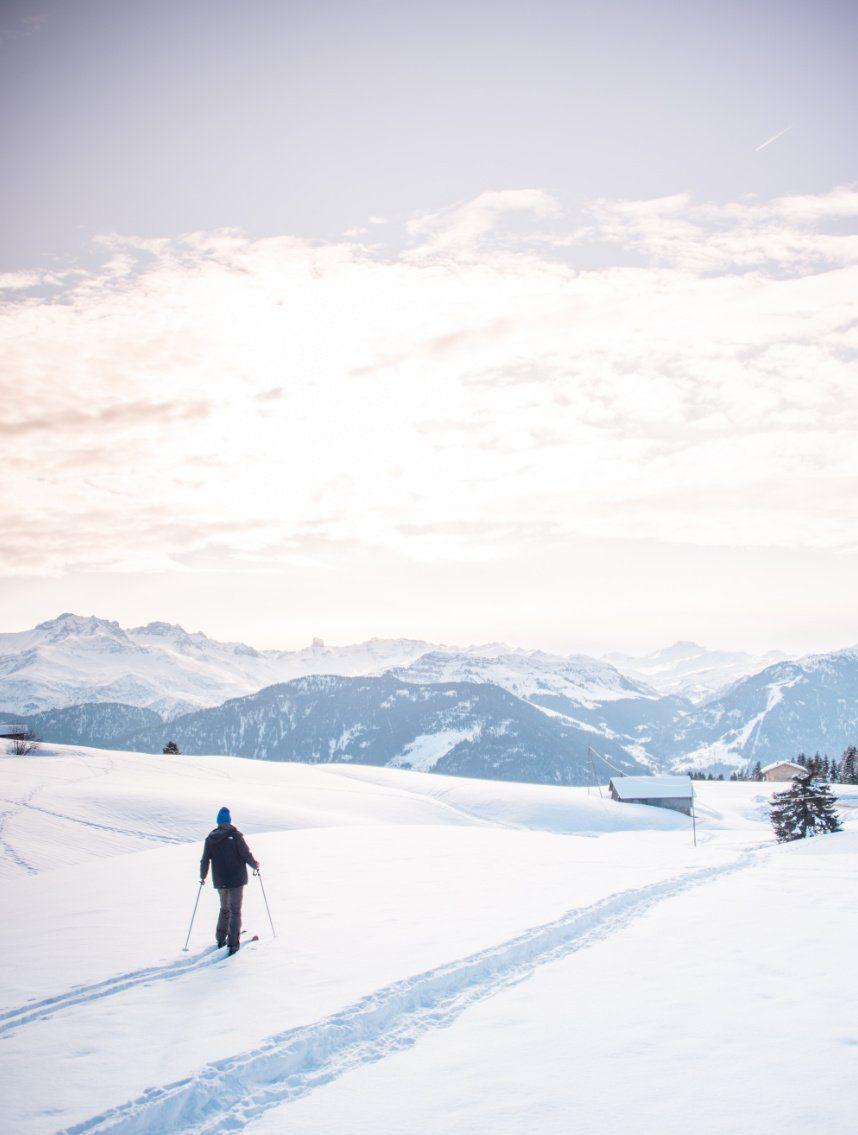 Ski-Raquettes les saisies