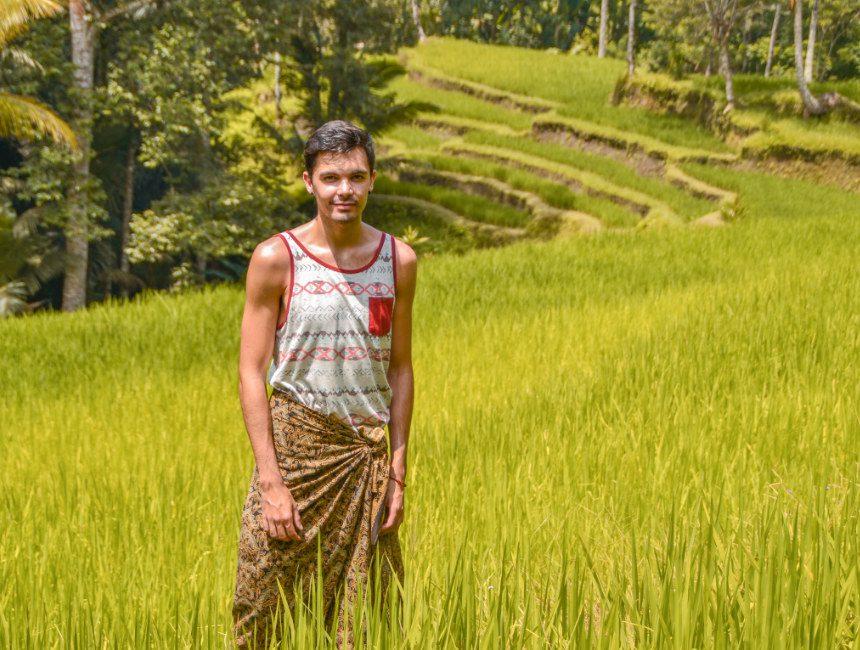 rijstterrassen bali rijstvelden