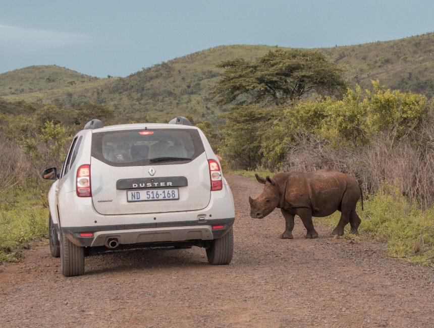 auto huren zuid Afrika park verzekering