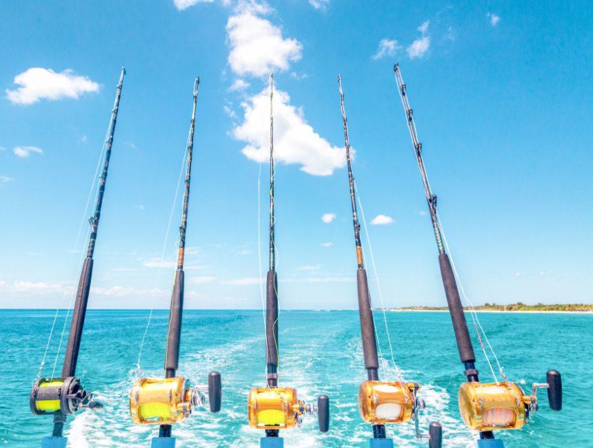excursies punta cana diepzee vissen