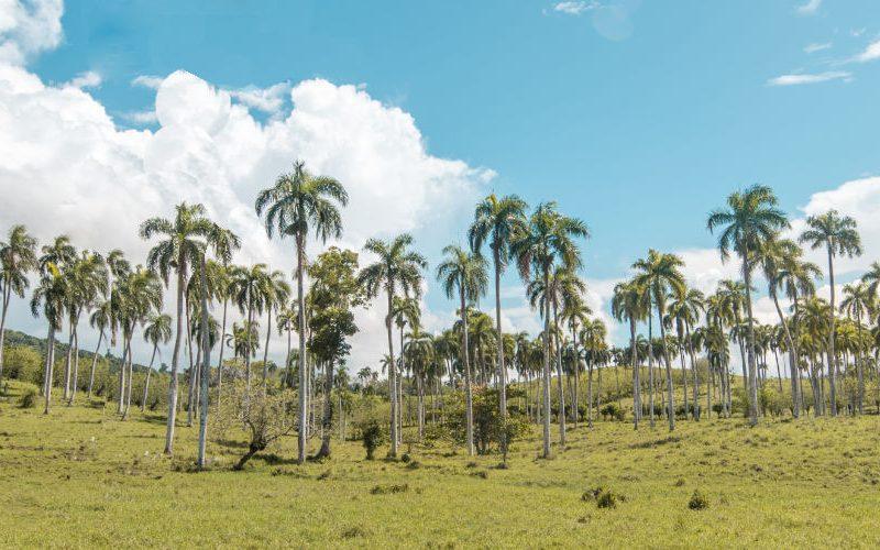 vakantie Dominicaanse