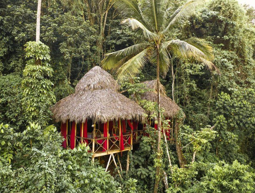 Dominican Tree House Samana