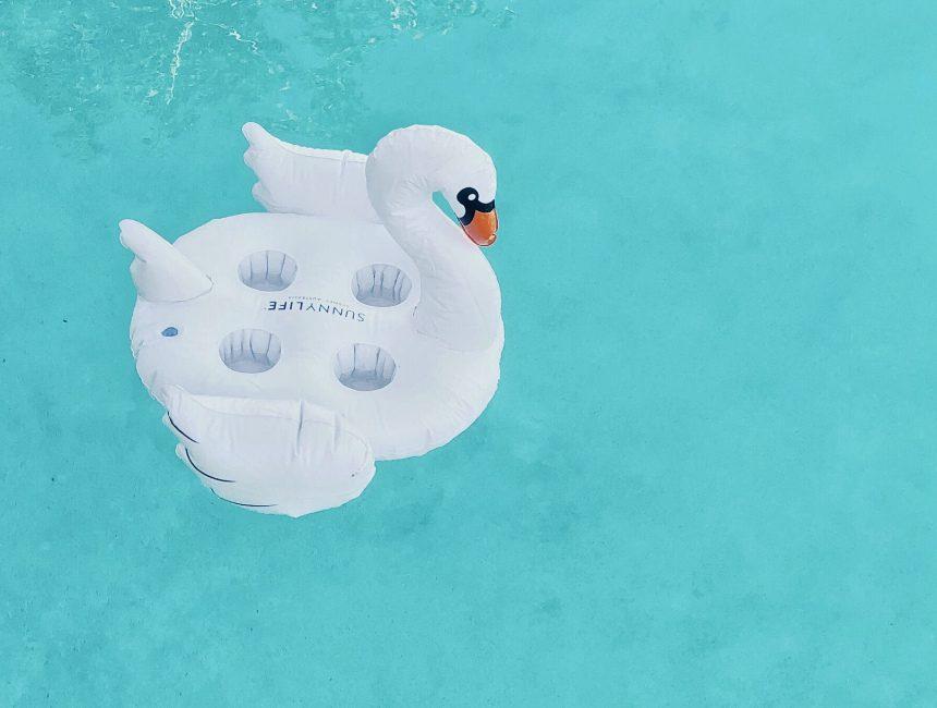 opblaasbare dieren opblaasdieren water