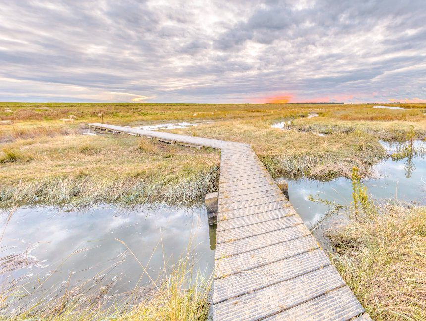 Verdronken zwarte polder