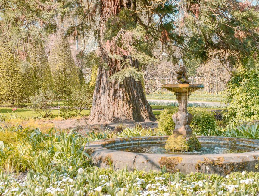 Hortus Botanicus Lovaniensis