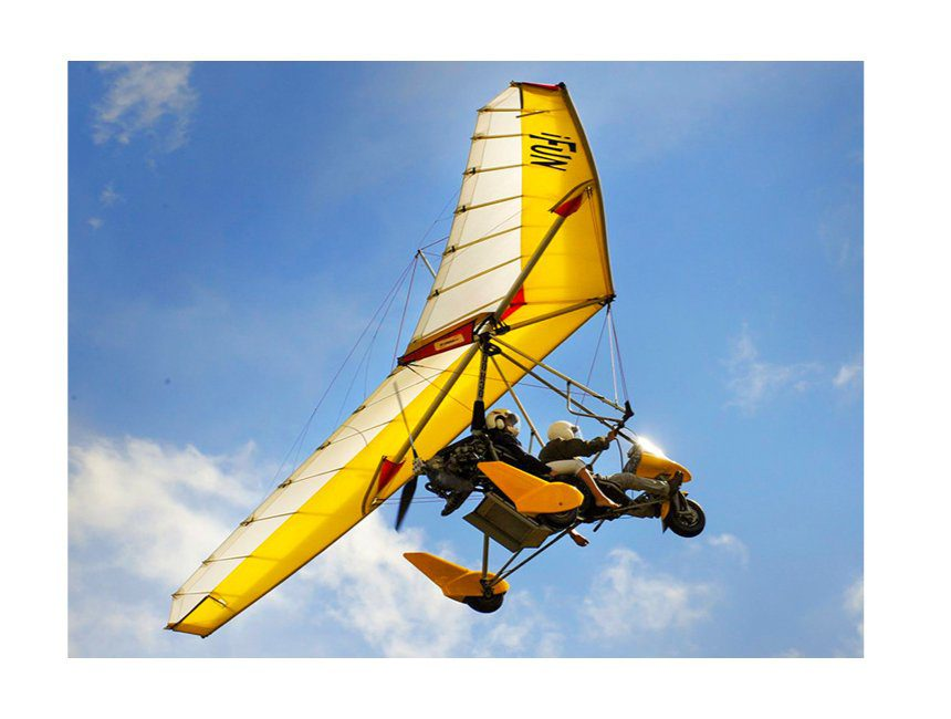 Meevliegen in een DPM - Bongo bon
