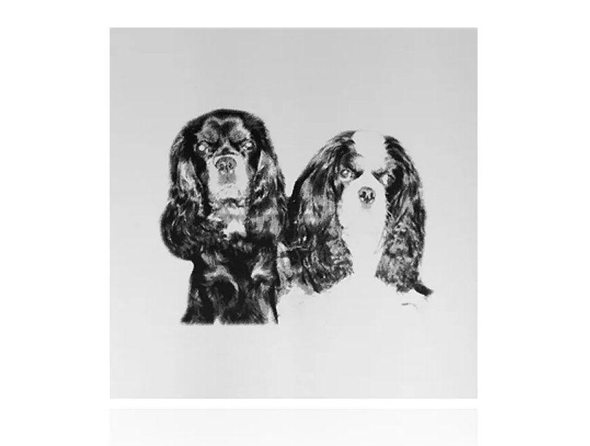 Gegraveerde spiegel gepersonaliseerd cadeau hond