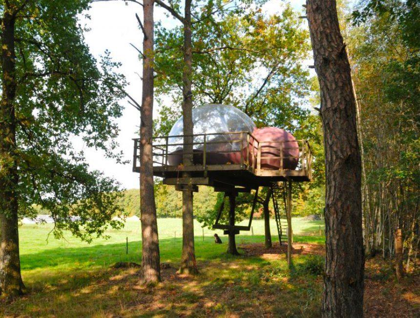 boomhut overnachten in het bos België