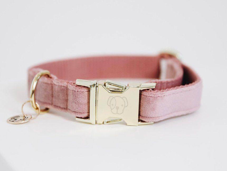 cadeau voor hond en baasje halsband