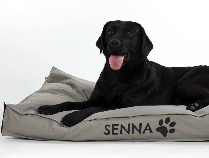 gepersonaliseerd cadeau hond kussen