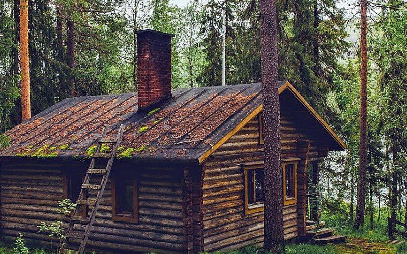overnachten in het bos