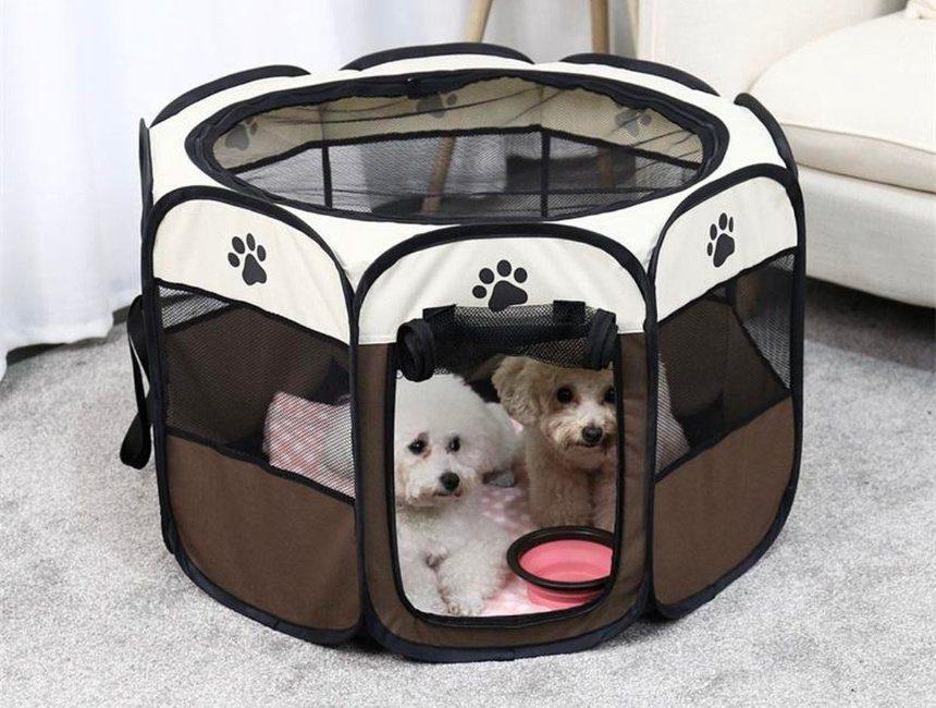 reisbench cadeau hond en baas