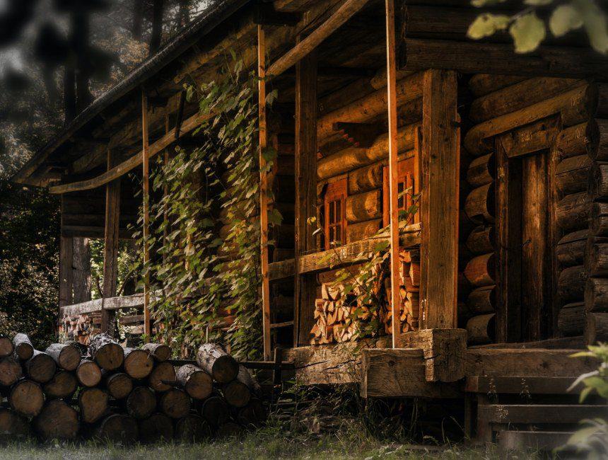 romantisch overnachten in het bos
