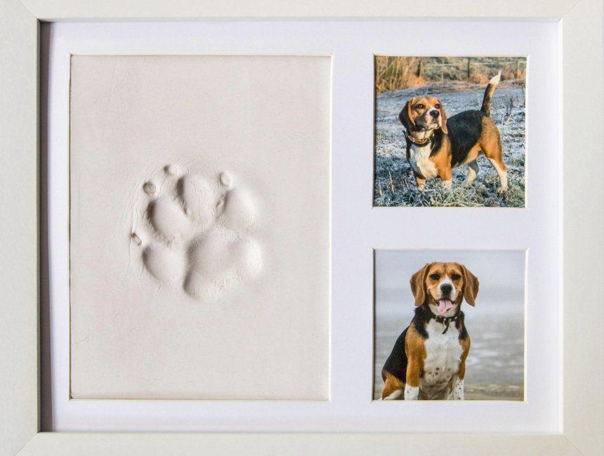 gepersonaliseerd cadeau hond