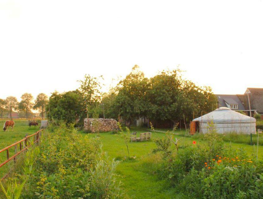 Sauwerd yurt