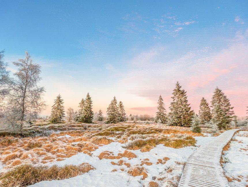 bezienswaardigheden Ardennen hoge venen winter