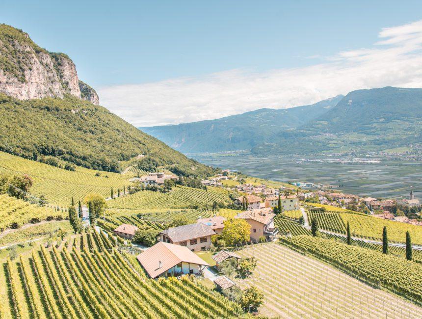 bezienswaardigheden Dolomieten wijngaarden