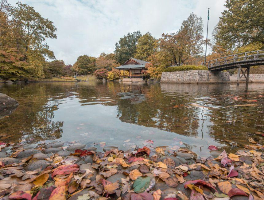 Bezienswaardigheden Hasselt natuur Japanse Tuin